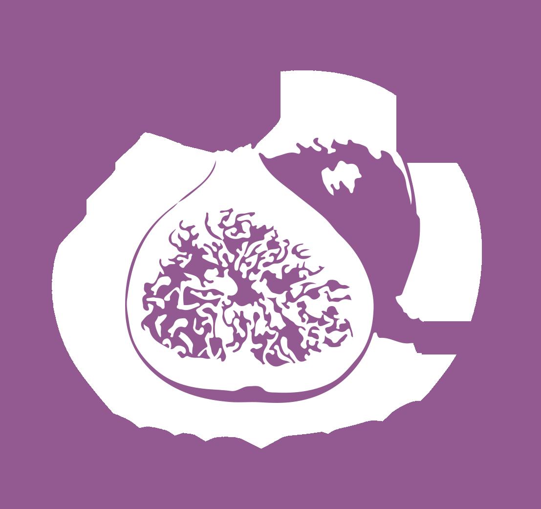 Logo_frutas_ficus